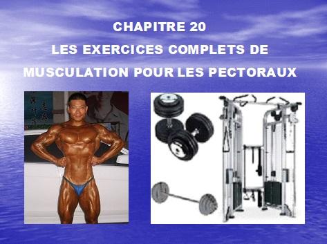 Chapitre 20